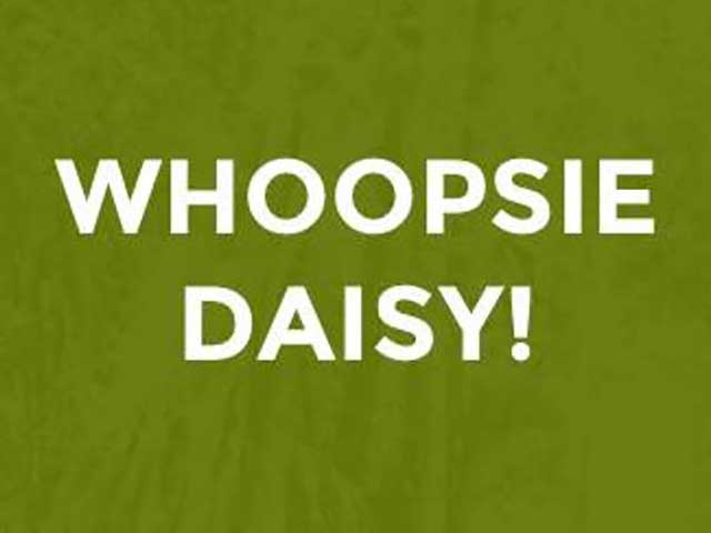 whoopsie-daisy