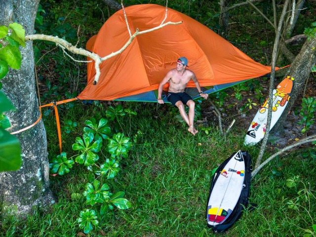 five-star-jungle-accommodations-for-slade