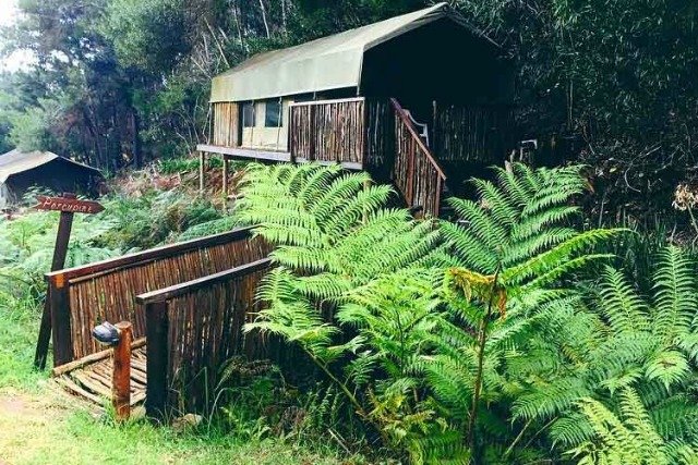 If Glamping Is Your Thing Then These Cape Campsites Are For You