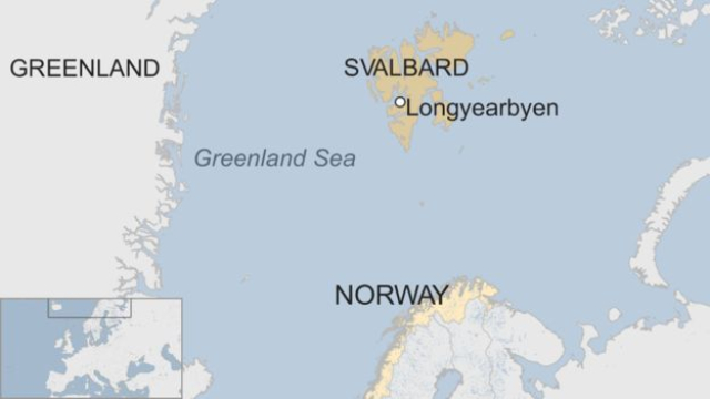 Polar bear killed after attack on Arctic cruise ship guard in Norway