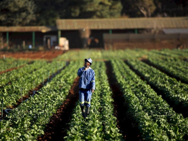 "SA Land Reform Programme Shows Fraud ""On An Enormous Scale"