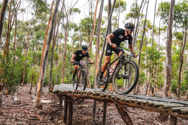 The Local, Affordable Bicycles That Stole The Cape Epic