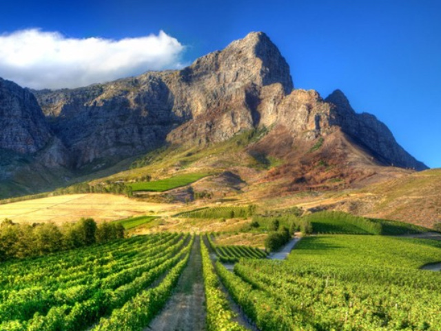 Fortune's Superb Feature On The Cape Winelands  –  2oceansvibe.com